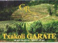 TXAKOLI GARATE -Txakoli D.O. Araba- - Foto 6