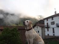 HOSTAL EZKURRA (Ezkurra - Navarra) - Foto 3