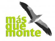 MÁS QUE MONTE, RUTAS Y SENDERISMO (Peñarrubias de Pirón - Segovia) - Foto 1